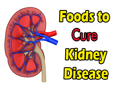 Diet for Renal Diseases